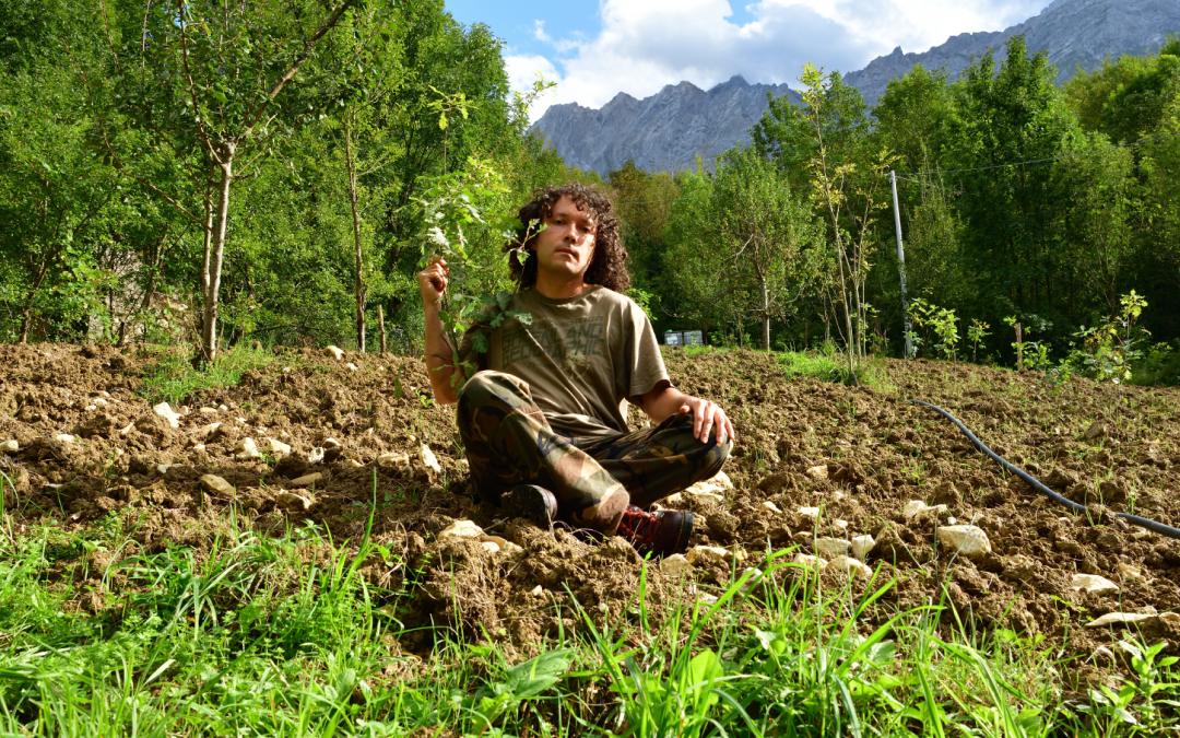 Fabrizio pianta alberi: storia del ragazzo che sta rimboscando Castelli
